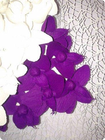 """""""Сто и ОДНА орхидея""""  МОИ ОРХИДЕИ  Жду мыслей тысячи касаний,  как ждёт младенец молока,  как ждёт искусство дарований,  как ждёт учёба дурака..   Я жду рождения идеи,  чтоб обратить её в цветы.  И будут пахнуть орхидеи  на благо общей суеты.   Автор: ВИТАЛИ ВИДАЛЬ  Настенное панно. Общий размер - 160 см х 90 см. Размер цветка 70 см х 60 см.  Состав материалов: бумага гофрированная, нитки, клей, пеноплекс, сетка флористическая, ветки сосновые, поролон, зубочистки, краски гуашевые. Состав конфет: """"Sharlet"""" трюфель 100 штук. фото 5"""