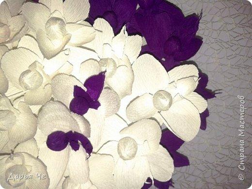 """""""Сто и ОДНА орхидея""""  МОИ ОРХИДЕИ  Жду мыслей тысячи касаний,  как ждёт младенец молока,  как ждёт искусство дарований,  как ждёт учёба дурака..   Я жду рождения идеи,  чтоб обратить её в цветы.  И будут пахнуть орхидеи  на благо общей суеты.   Автор: ВИТАЛИ ВИДАЛЬ  Настенное панно. Общий размер - 160 см х 90 см. Размер цветка 70 см х 60 см.  Состав материалов: бумага гофрированная, нитки, клей, пеноплекс, сетка флористическая, ветки сосновые, поролон, зубочистки, краски гуашевые. Состав конфет: """"Sharlet"""" трюфель 100 штук. фото 6"""