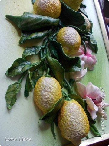 Лимоны и клематисы фото 12
