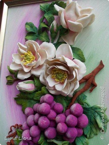 Розы и виноград фото 4