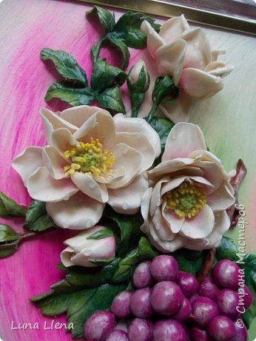 Розы и виноград фото 5