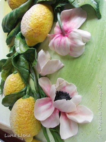 Лимоны и клематисы фото 9