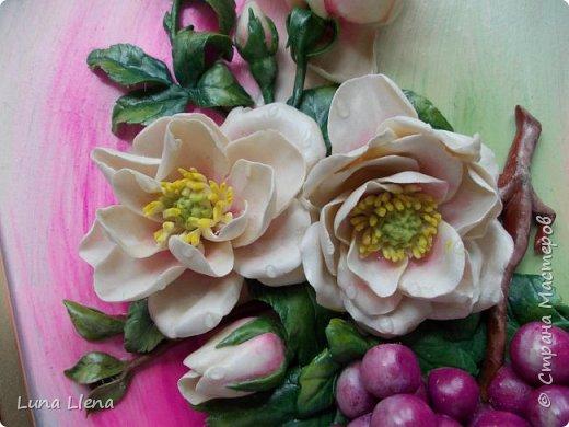 Розы и виноград фото 9