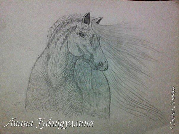 Мой последний рисунок  фото 1
