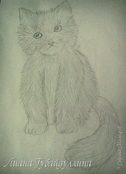 Мой последний рисунок  фото 2