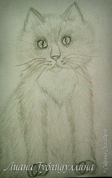 Мой последний рисунок  фото 3