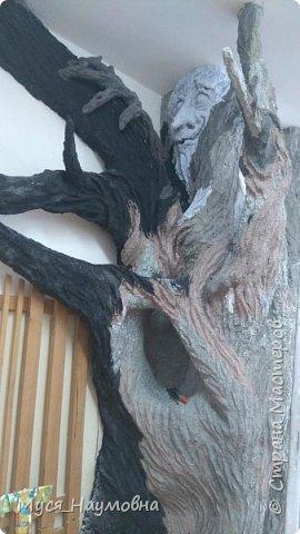 """Вот такой дуб  вырос в нашем 1-ом """"В"""" за два месяца.... фото 10"""