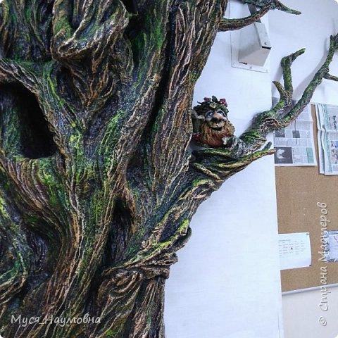 """Вот такой дуб  вырос в нашем 1-ом """"В"""" за два месяца.... фото 15"""