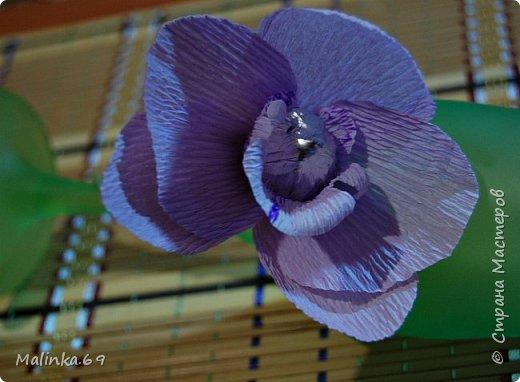 И снова здравствуйте!Работ в апреле можно сказать не было,поэтому от души оторвалась на конкурсе))).Решила создать блог,так как просили показать, как я делала орхидею,честно признаться,показывать то и нечего особенно,да и МК есть,но фотки сделала для вас и немного опишу,раз просите;). фото 10
