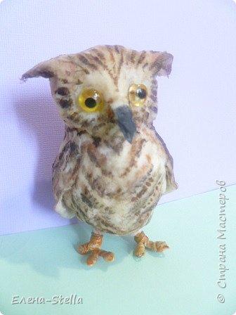 Всех приветствую из ПИТЕРА! Сегодня покажу вам птичку - СОВЕНОК ФЕНЯ -  сделан на заказ. ВАТА - 8см.  Я тоже люблю совушек, поэтому сделала его с удовольствием и на одном дыхании.  Феня еще маленький и ему все очень интересно! фото 6