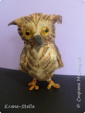 Всех приветствую из ПИТЕРА! Сегодня покажу вам птичку - СОВЕНОК ФЕНЯ -  сделан на заказ. ВАТА - 8см.  Я тоже люблю совушек, поэтому сделала его с удовольствием и на одном дыхании.  Феня еще маленький и ему все очень интересно! фото 5