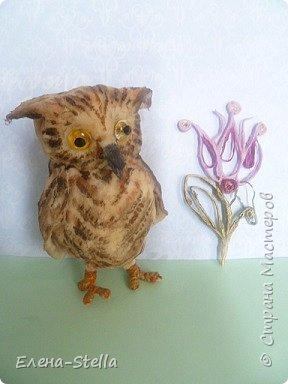 Всех приветствую из ПИТЕРА! Сегодня покажу вам птичку - СОВЕНОК ФЕНЯ -  сделан на заказ. ВАТА - 8см.  Я тоже люблю совушек, поэтому сделала его с удовольствием и на одном дыхании.  Феня еще маленький и ему все очень интересно! фото 2
