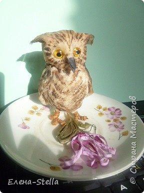 Всех приветствую из ПИТЕРА! Сегодня покажу вам птичку - СОВЕНОК ФЕНЯ -  сделан на заказ. ВАТА - 8см.  Я тоже люблю совушек, поэтому сделала его с удовольствием и на одном дыхании.  Феня еще маленький и ему все очень интересно! фото 9