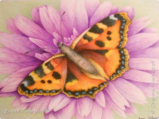 Картина нарисована цветным карандашом и фломастером. фото 2