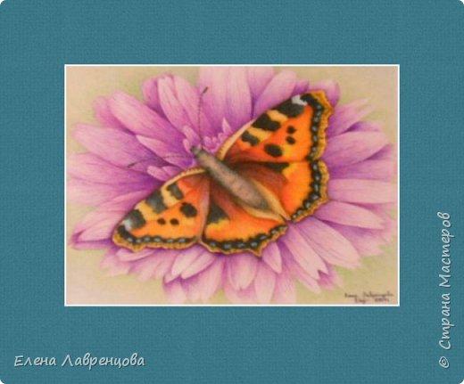 Картина нарисована цветным карандашом и фломастером. фото 1