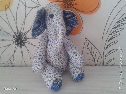 мама слон клубничка фото 2