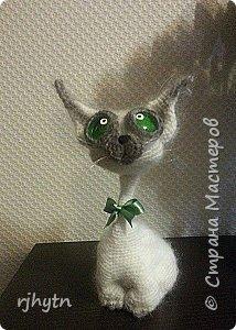 Лунный кот. Связан по мастер-классу Светланы Перцевой. фото 2