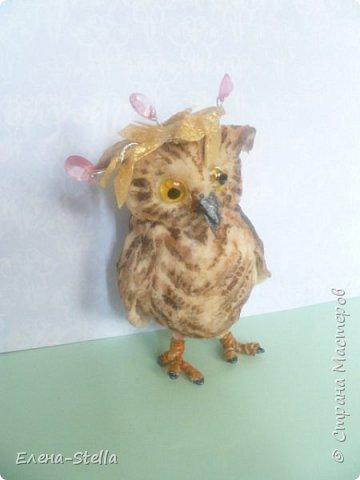 Всех приветствую из ПИТЕРА! Сегодня покажу вам птичку - СОВЕНОК ФЕНЯ -  сделан на заказ. ВАТА - 8см.  Я тоже люблю совушек, поэтому сделала его с удовольствием и на одном дыхании.  Феня еще маленький и ему все очень интересно! фото 1