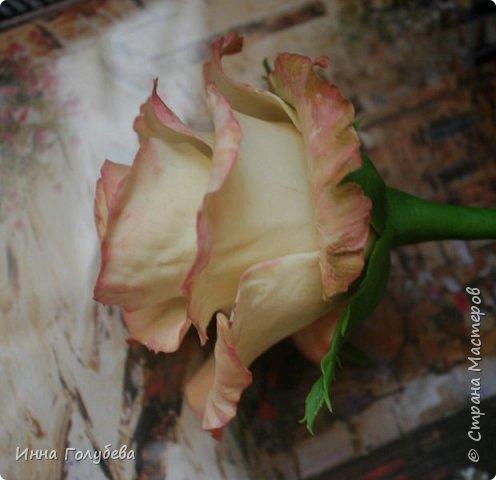 Продолжаю отрабатывать лепку роз.В этот раз вот такую слепила,такого цвета я еще розы не лепила) фото 4