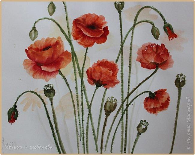 Рисунки акварелью: фото 13