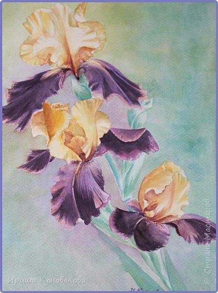 Рисунки акварелью: фото 24