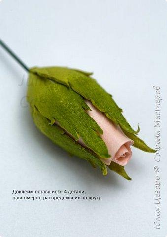 Здравствуйте дорогие рукодельницы!   Представляю Вам мой небольшой мастер-класс по созданию бутона розы из фоамирана.   фото 27