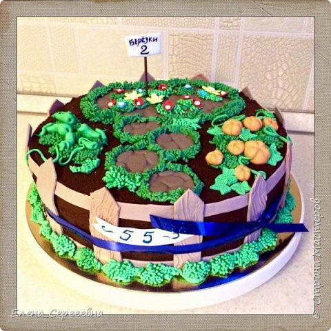 Домашние торты фото 18