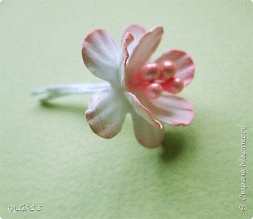 Добрый вечер, дорогие мастера и мастерицы! Хочу поделиться с вами этапами изготовлением мелких  бумажных цветов.  Мы сделаем три вида цветов: маленькие тюльпаны, белые цветы и простые мелкие цветочки. На этом фото - белые цветы и тюльпаны.  фото 32