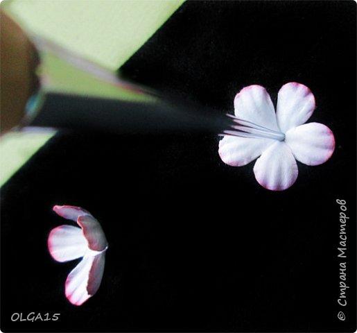 Добрый вечер, дорогие мастера и мастерицы! Хочу поделиться с вами этапами изготовлением мелких  бумажных цветов.  Мы сделаем три вида цветов: маленькие тюльпаны, белые цветы и простые мелкие цветочки. На этом фото - белые цветы и тюльпаны.  фото 29