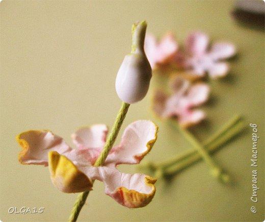 Добрый вечер, дорогие мастера и мастерицы! Хочу поделиться с вами этапами изготовлением мелких  бумажных цветов.  Мы сделаем три вида цветов: маленькие тюльпаны, белые цветы и простые мелкие цветочки. На этом фото - белые цветы и тюльпаны.  фото 14