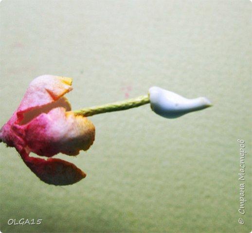 Добрый вечер, дорогие мастера и мастерицы! Хочу поделиться с вами этапами изготовлением мелких  бумажных цветов.  Мы сделаем три вида цветов: маленькие тюльпаны, белые цветы и простые мелкие цветочки. На этом фото - белые цветы и тюльпаны.  фото 15