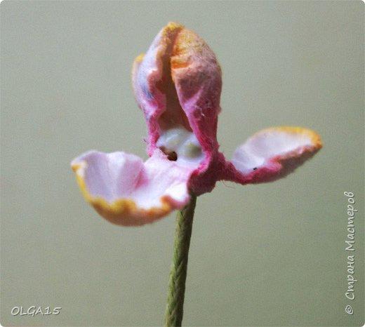 Добрый вечер, дорогие мастера и мастерицы! Хочу поделиться с вами этапами изготовлением мелких  бумажных цветов.  Мы сделаем три вида цветов: маленькие тюльпаны, белые цветы и простые мелкие цветочки. На этом фото - белые цветы и тюльпаны.  фото 17
