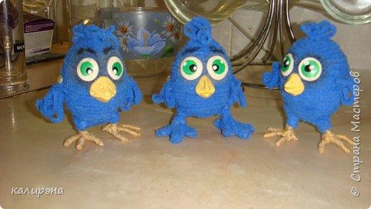 Задумывались птенчики Птицы Счастья. А получилось нечто... вдогонку к моим предыдущим цыплятам http://stranamasterov.ru/node/1015697 фото 3