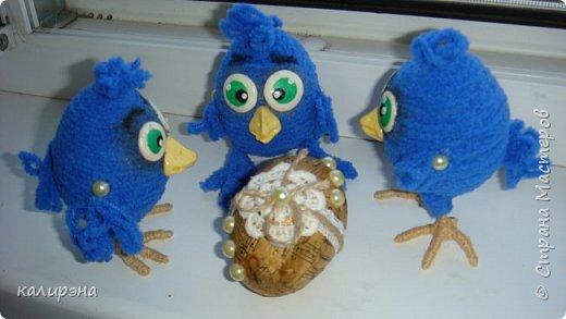Задумывались птенчики Птицы Счастья. А получилось нечто... вдогонку к моим предыдущим цыплятам http://stranamasterov.ru/node/1015697 фото 2