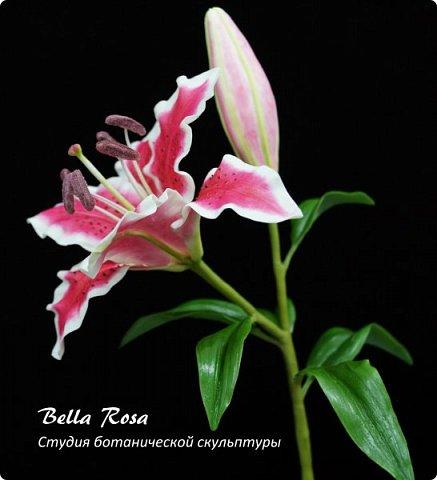 20 часов работы и ...... рождение очередного живого цветка - лилии.  Спасибо Юлии Карденас Вальин и Юлии Солонцовой, которые попросили поставить данный МК. Результат превзошел все ожидания! Еще фото лилии. Обратите внимание на тщательную проработку изнаночной стороны цветка и листьев. фото 1
