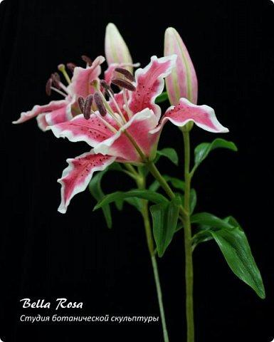 20 часов работы и ...... рождение очередного живого цветка - лилии.  Спасибо Юлии Карденас Вальин и Юлии Солонцовой, которые попросили поставить данный МК. Результат превзошел все ожидания! Еще фото лилии. Обратите внимание на тщательную проработку изнаночной стороны цветка и листьев. фото 3