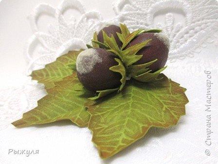 Всем доброго времени суток!  Я вот тут новые техники пробовала , решила Вам показать))) Это чёрная смородинка - листья из фоамирана, а ягодки из силикона! фото 4