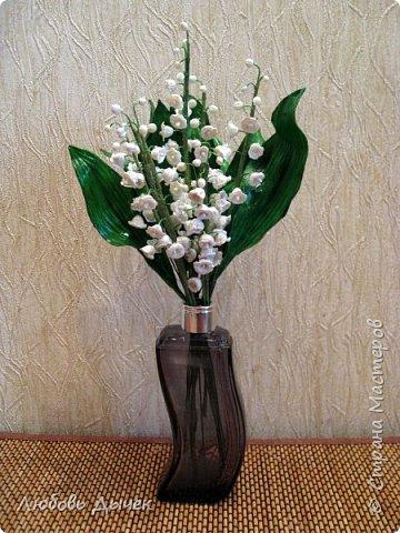 Всем доброго времени суток! За окном апрель, а мне захотелось приблизить время цветения ландышей.  фото 1
