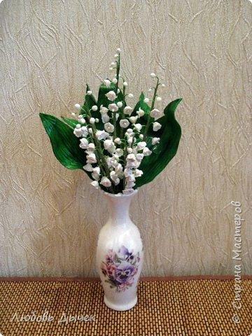 Всем доброго времени суток! За окном апрель, а мне захотелось приблизить время цветения ландышей.  фото 5