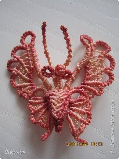 Бабочка, выполнена в технике макраме. В работе использованы белые капроновые нити, толщиной 2 мм. 10 нитей  по 1,5 метра.  фото 1