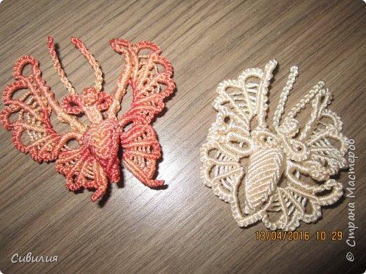 Бабочка, выполнена в технике макраме. В работе использованы белые капроновые нити, толщиной 2 мм. 10 нитей  по 1,5 метра.  фото 5
