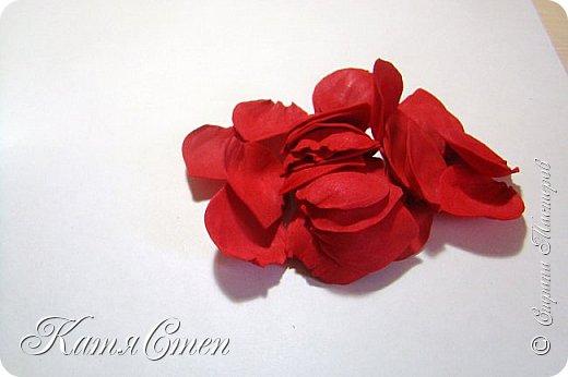 Предлагаю Вашему вниманию мой вариант создания пионовидной розы.  Материалы: 1. Фоамиран  2-х цветов - для розы и зеленый для листьев (я использовала иранский). 2. Термо-клей или супер-клей. 3. Молд листа розы (хотя можно и без него...). 4. Ножницы. 5. Губка для посуды. 6. Округлый предмет\булька - у меня шарик от светильника))). 7. Утюг. 8. Краска для тонировки листьев - акрил, пастель сухая или масляная.  9. Лак акриловый (по желанию или наличию))).   фото 8