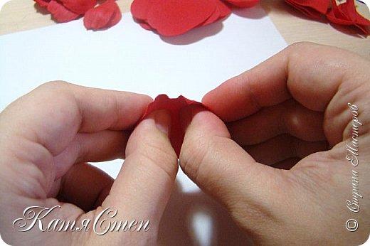 Предлагаю Вашему вниманию мой вариант создания пионовидной розы.  Материалы: 1. Фоамиран  2-х цветов - для розы и зеленый для листьев (я использовала иранский). 2. Термо-клей или супер-клей. 3. Молд листа розы (хотя можно и без него...). 4. Ножницы. 5. Губка для посуды. 6. Округлый предмет\булька - у меня шарик от светильника))). 7. Утюг. 8. Краска для тонировки листьев - акрил, пастель сухая или масляная.  9. Лак акриловый (по желанию или наличию))).   фото 16