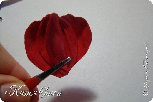 Предлагаю Вашему вниманию мой вариант создания пионовидной розы.  Материалы: 1. Фоамиран  2-х цветов - для розы и зеленый для листьев (я использовала иранский). 2. Термо-клей или супер-клей. 3. Молд листа розы (хотя можно и без него...). 4. Ножницы. 5. Губка для посуды. 6. Округлый предмет\булька - у меня шарик от светильника))). 7. Утюг. 8. Краска для тонировки листьев - акрил, пастель сухая или масляная.  9. Лак акриловый (по желанию или наличию))).   фото 20