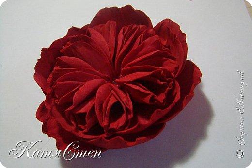 Предлагаю Вашему вниманию мой вариант создания пионовидной розы.  Материалы: 1. Фоамиран  2-х цветов - для розы и зеленый для листьев (я использовала иранский). 2. Термо-клей или супер-клей. 3. Молд листа розы (хотя можно и без него...). 4. Ножницы. 5. Губка для посуды. 6. Округлый предмет\булька - у меня шарик от светильника))). 7. Утюг. 8. Краска для тонировки листьев - акрил, пастель сухая или масляная.  9. Лак акриловый (по желанию или наличию))).   фото 30