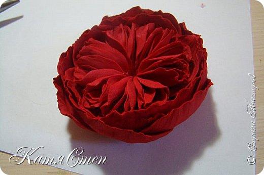 Предлагаю Вашему вниманию мой вариант создания пионовидной розы.  Материалы: 1. Фоамиран  2-х цветов - для розы и зеленый для листьев (я использовала иранский). 2. Термо-клей или супер-клей. 3. Молд листа розы (хотя можно и без него...). 4. Ножницы. 5. Губка для посуды. 6. Округлый предмет\булька - у меня шарик от светильника))). 7. Утюг. 8. Краска для тонировки листьев - акрил, пастель сухая или масляная.  9. Лак акриловый (по желанию или наличию))).   фото 32