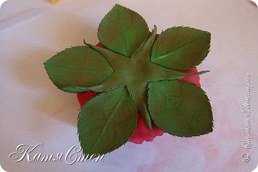 Предлагаю Вашему вниманию мой вариант создания пионовидной розы.  Материалы: 1. Фоамиран  2-х цветов - для розы и зеленый для листьев (я использовала иранский). 2. Термо-клей или супер-клей. 3. Молд листа розы (хотя можно и без него...). 4. Ножницы. 5. Губка для посуды. 6. Округлый предмет\булька - у меня шарик от светильника))). 7. Утюг. 8. Краска для тонировки листьев - акрил, пастель сухая или масляная.  9. Лак акриловый (по желанию или наличию))).   фото 47