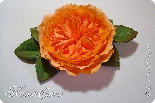 Предлагаю Вашему вниманию мой вариант создания пионовидной розы.  Материалы: 1. Фоамиран  2-х цветов - для розы и зеленый для листьев (я использовала иранский). 2. Термо-клей или супер-клей. 3. Молд листа розы (хотя можно и без него...). 4. Ножницы. 5. Губка для посуды. 6. Округлый предмет\булька - у меня шарик от светильника))). 7. Утюг. 8. Краска для тонировки листьев - акрил, пастель сухая или масляная.  9. Лак акриловый (по желанию или наличию))).   фото 50