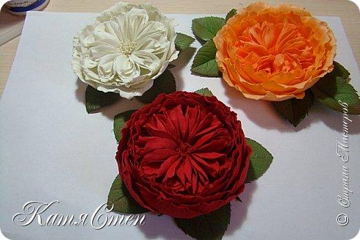 Предлагаю Вашему вниманию мой вариант создания пионовидной розы.  Материалы: 1. Фоамиран  2-х цветов - для розы и зеленый для листьев (я использовала иранский). 2. Термо-клей или супер-клей. 3. Молд листа розы (хотя можно и без него...). 4. Ножницы. 5. Губка для посуды. 6. Округлый предмет\булька - у меня шарик от светильника))). 7. Утюг. 8. Краска для тонировки листьев - акрил, пастель сухая или масляная.  9. Лак акриловый (по желанию или наличию))).   фото 51