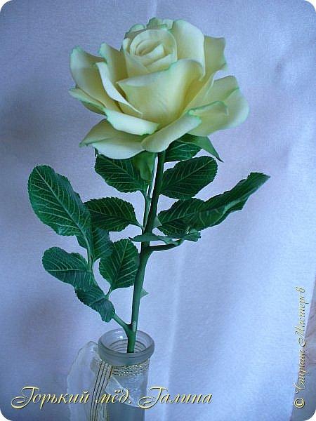 Доброго времени жители Страны Мастеров! Всё так же продолжаю учиться лепке цветов из полимерной глины. Что получается лучше, а что то не очень))  Роза примерно 45 см высота, диаметр цветка около 10 см. Не шедевр, но симпатичная) фото 5